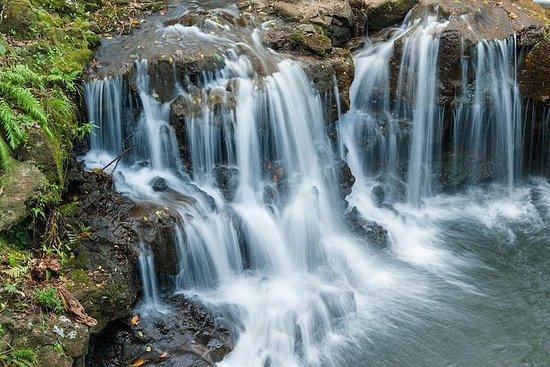 冒险之旅:瓦莱·德·库勒斯和拉凡妮尔自然公园和格里斯·格里斯