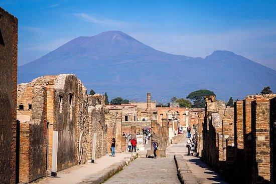 Gita di un giorno alle rovine di Pompei