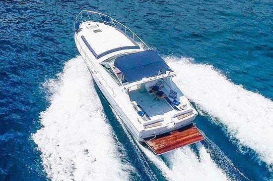 索倫托出發的阿馬爾菲和波西塔諾私人乘船遊覽(7/8小時)豪華