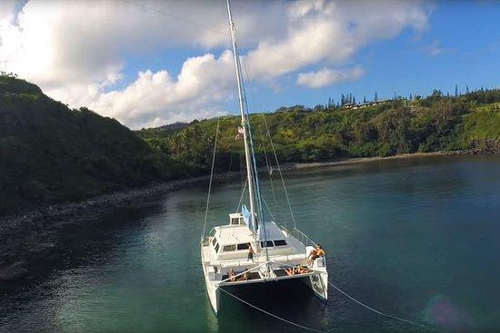 Honolua Bay Snorkel Sail from Lahaina