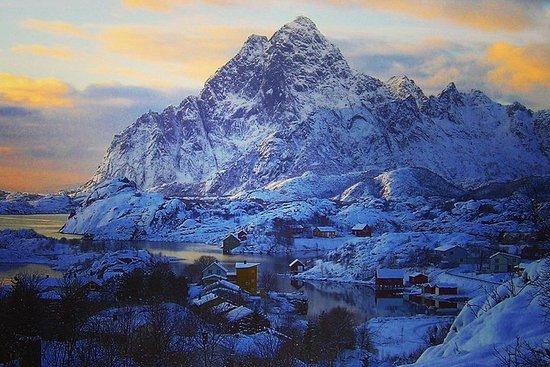 Tour guiado de invierno de las islas Lofoten