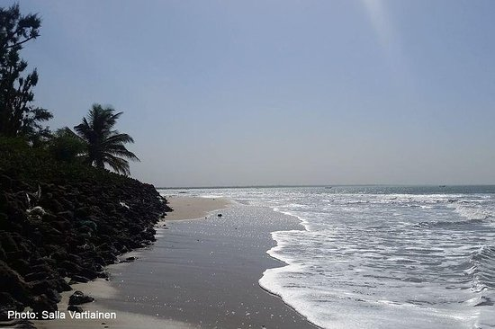South Gambia Tour - Fishing village and Paradise Beach