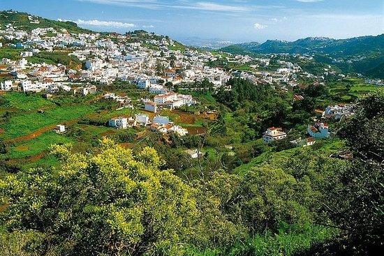 Visite guidée: Passé et présent de Gran Canaria