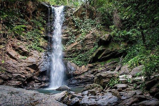 Avocat Waterfall and Beach Tour