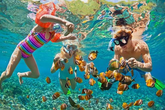 Snorkeling Tour à Nusa Penida Manta