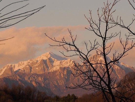 Albiate, Italy: Vista sulle montagne dal parco di Villa Campello