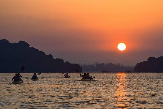 Sunrise Mangrove Kayaking Retreat...