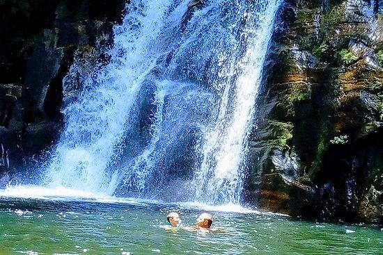 Sinharaja Regenwaldtouren