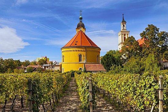 Degustazione di vini a Modra da Bratislava, in Slovacchia