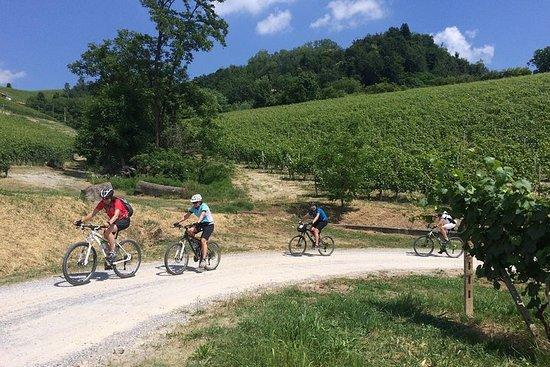 E-cykeltur, Barolo-vinsmagning og app