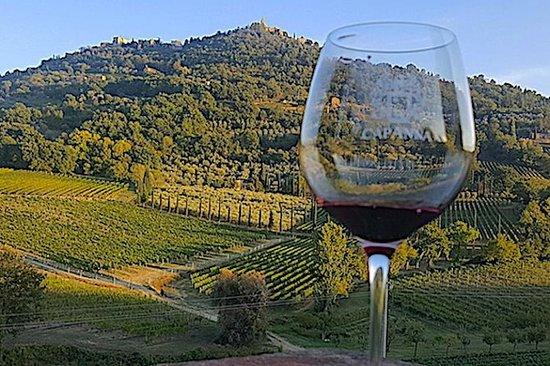 蒙特普爾恰諾葡萄酒之旅(3家葡萄酒廠和午餐)