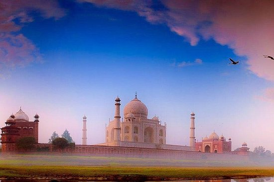 Excursion privée d'une journée au Taj...