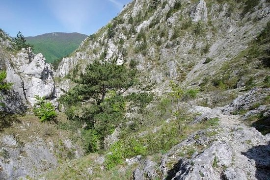 Private Day Hiking Trip to Tesna...