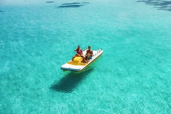 Create your own Pedal Boat TRIP & Free...