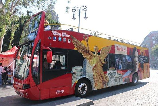 ツゥリバス乗り降り自由メキシコシティ・ツアー