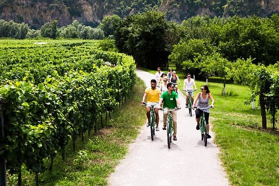 Liten gruppe Wachau Valley E-Bike Tour