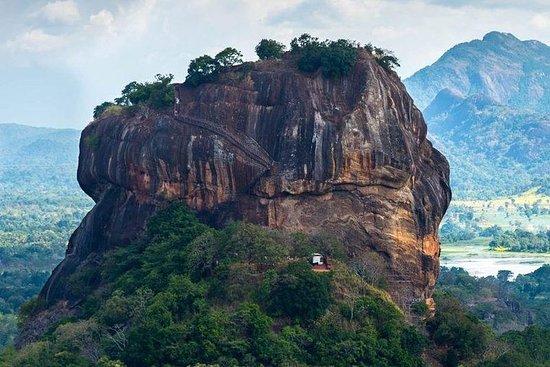 Sigiriya & Dambulla Day Tour fra Negombo