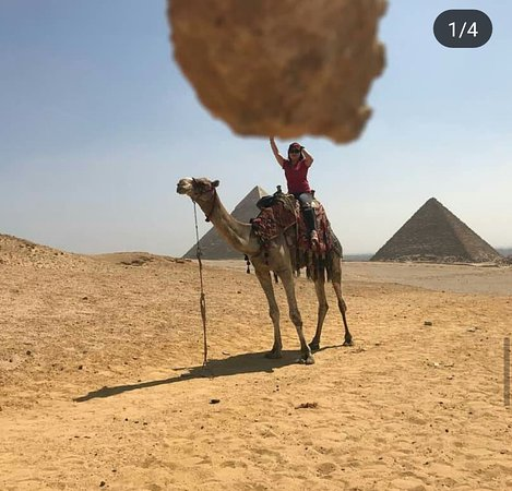 Cairo, Egypt: Fantastic camel ride by the Pyramids