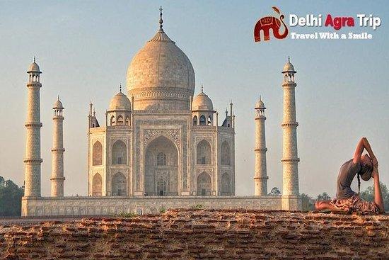 从德里清晨私人泰姬陵日出之旅
