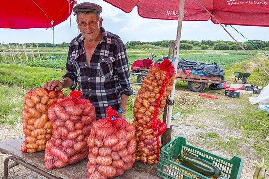 La gira de los agricultores locales.