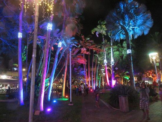 Illuminations de palmiers de la place des Cocotiers.
