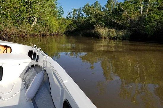 Privat båtturTur til Tigre Delta