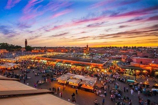Marrakesch: Tagesausflug ab Agadir mit...