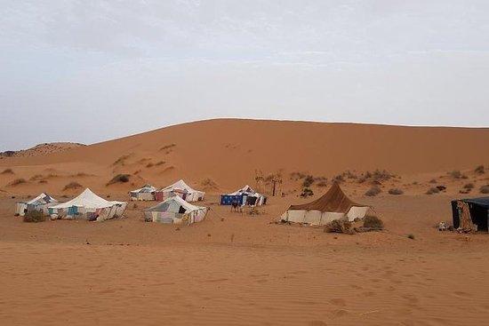 Nuit dans le désert d'Agadir - 2...