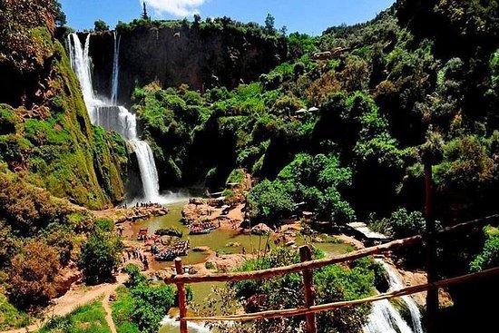 Ouzoud Wasserfälle Tagesausflug von...