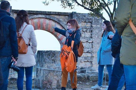 Visita a Medina Azahara desde Córdoba