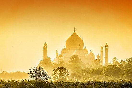 Taj Mahal og Agra Fort Sunrise Tour fra...