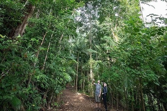 Private Group Eco Tour