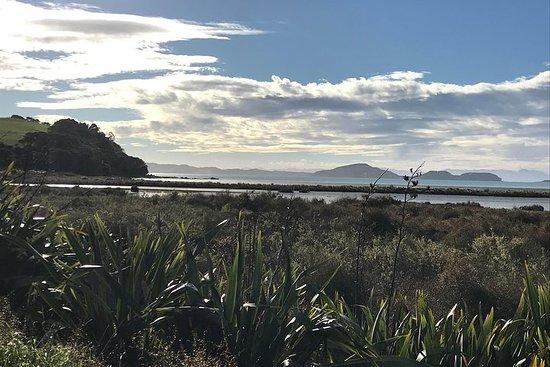 Beautiful Pohutukawa Coast - Half Day Private Tour صورة فوتوغرافية
