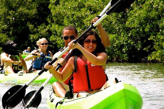 Foto St Thomas Mangrove Lagoon Kayak and Snorkel Tour