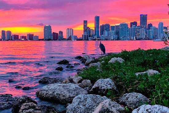 National Park & Boat Tours in Key Biscayne | USA Today |Boat Trip Miami Key Biscayne
