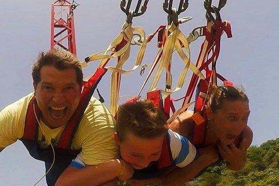 Sky Swing, Monkeys and Sloth Adventure...