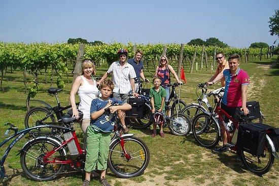 Excursion à vélo dans les vignobles...
