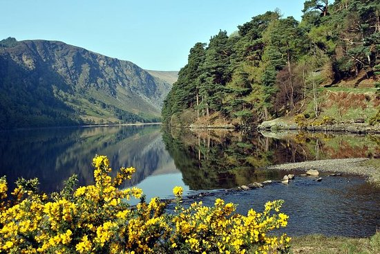 Wicklow, Powerscourt, and Glendalough...