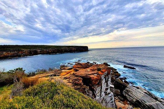 Premium Sydney Coastal Trek con...