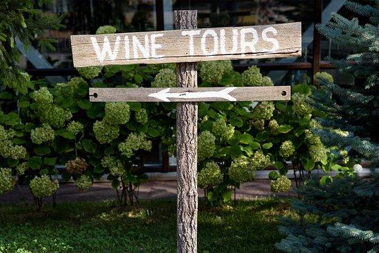 Tour privato per degustazione di vini della Fraser Valley