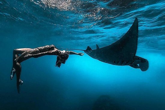 Nusa Penida Snorkeling Adventure...