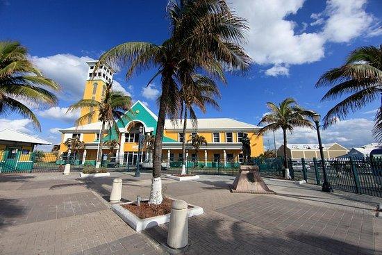 Excursión por la costa de Nassau...