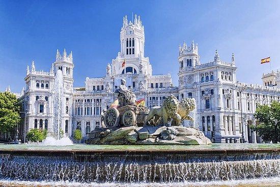 Recorrido a pie privado por Madrid...