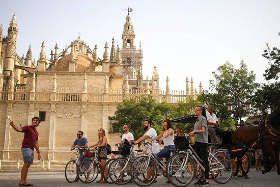 Tour in bici delle attrazioni