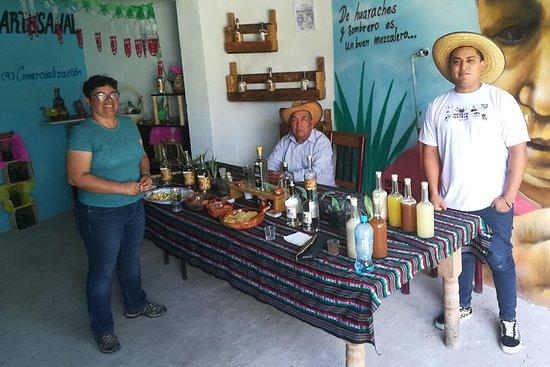 """Tour the """"RUTA DEL MEZCAL"""" Puebla"""