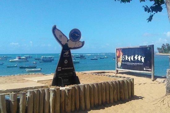 Reguliere tour naar Forte Beach ...