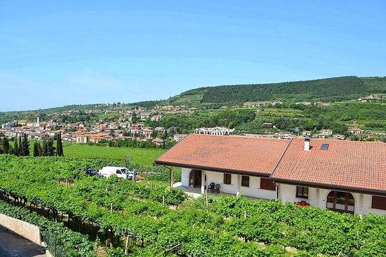 Valpolicella - el paraíso del vino