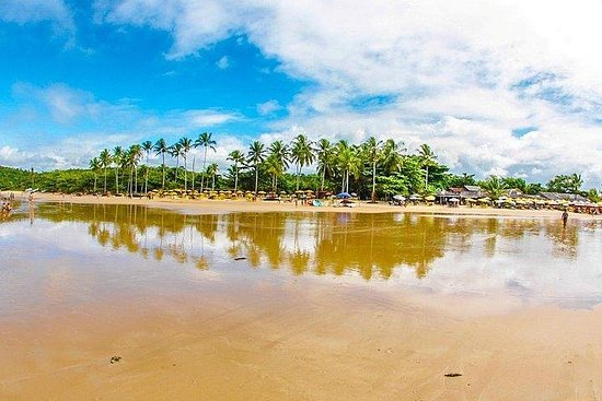 Trancoso Tour with Coqueiros Beach - by Coconut Experience