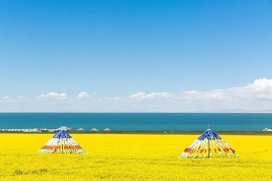 Private Qinghai Lake day Trip from...