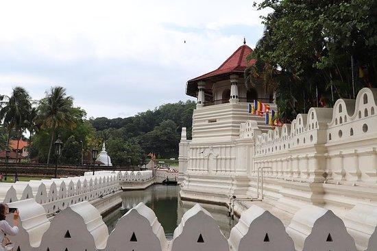 Tour To Kandy Sri Lanka